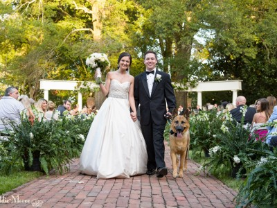 bride and groom with german shepherd